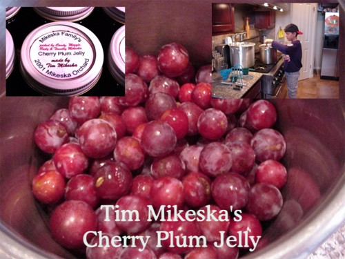 how to make cherry plum jelly